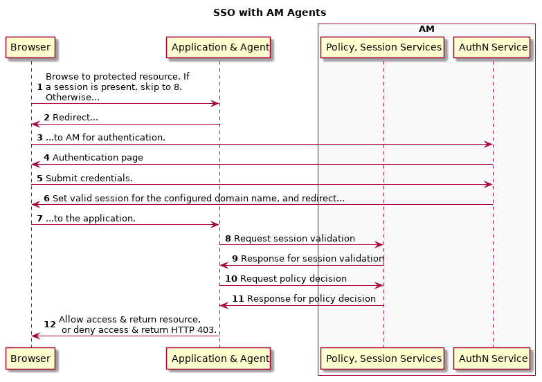 AM 5 5 > Authentication and Single Sign-On Guide